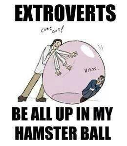 bubble-extroverts.jpg