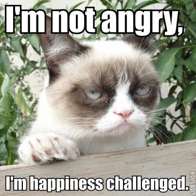 Im-not-angry.jpg